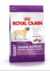 Royal Canin Giant Junior Active Роял Канин Джайнт Юниор Актив, Royal Canin