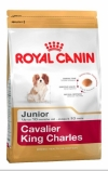 Royal Canin Cavalier King Charles 27 Роял Канин Кавалер Кинг Чарлс 27, Royal Canin