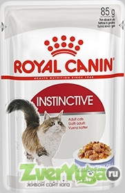 Купить Royal Canin Instinctive In Jelly Роял Канин Инстинктив, желе (Royal Canin)